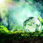 Economie circulaire et innovation